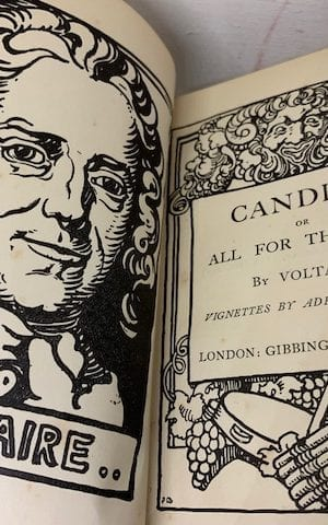 Candide or All for the best